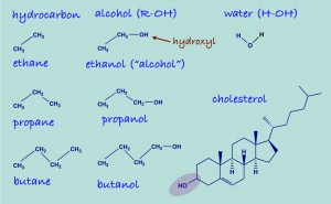 alkanealcohol_dec8