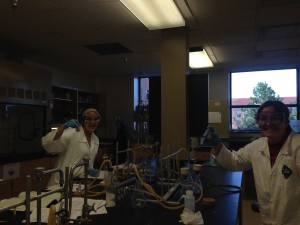 Lab is alkynes of fun!