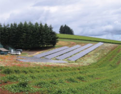 The Oregon solar array where Mat Elmore '09 conducted research for his TFP internship.