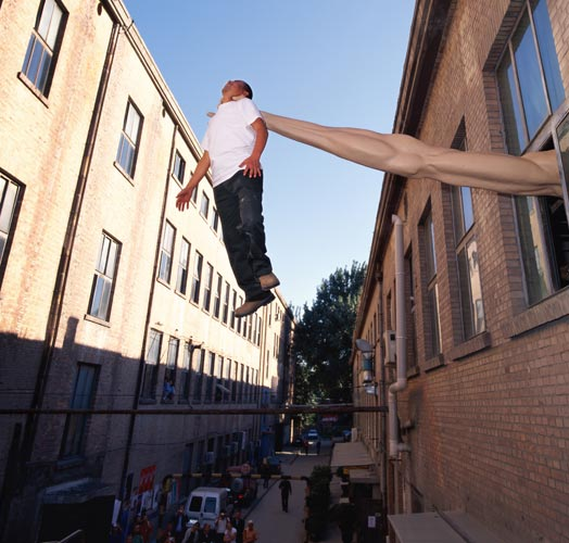 Illusionary Reality, Li Wei