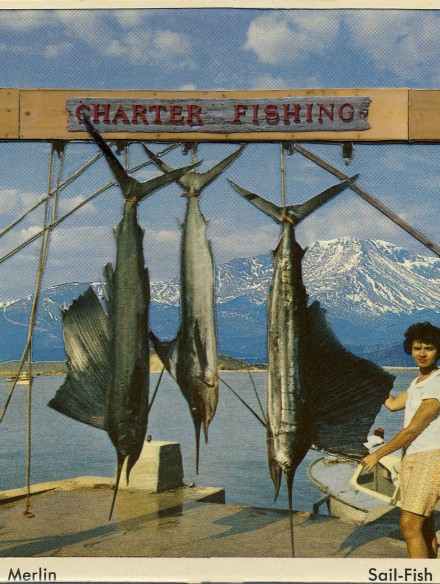 Sport fishing, PIkes Peak National Shoreline by David Armstrong