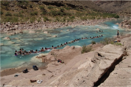 The confluence of the Colorado River and the Little Colorado River