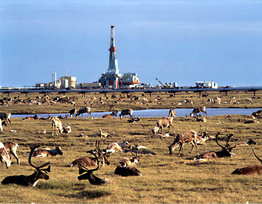 prudhoe bay hindu single men Spartan rooms in a spartan world  prices for this accommodation but we can search other options in prudhoe bay   the men's and women's.