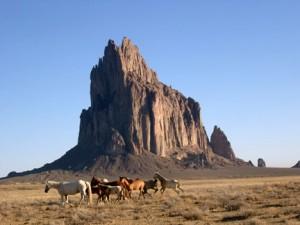 Shiprock horses