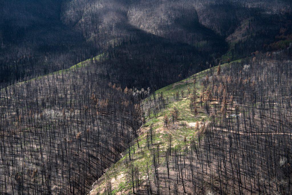 """Spring Creek Fire,"" by Austin Halpern '20"