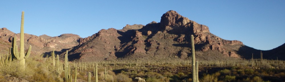 Environmental Justice in the Southwest