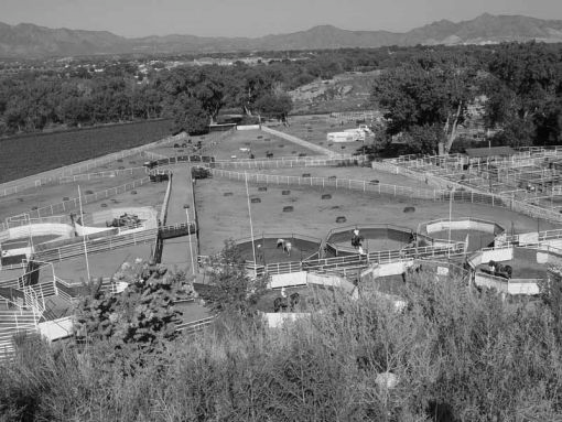 Courtesy of blm.gov
